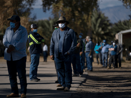 Hispanic farm workers wait in line to receive the Pfizer-BioNTech COVID-19 vaccine in Mecca, Calif., Thursday, Jan. 21, 2021. The farmworkers who got their shots are among the millions of immigrants around the United States, who advocacy groups warn may be some of the most difficult people to reach during …