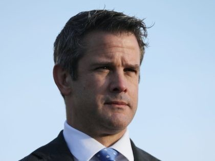 Kinzinger: Republican Party Is 'Basically The Titanic' in the Middle of a 'Slow Sink'