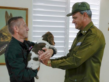 French police dog expert David Berceau (L) gives a canine donated by the French government to a Cuban official to promote the breeding of Springer Spaniel breed in Cuba, in Havana, on September 27, 2019. - The canines will be used as sniffer dogs by Cuban authorities. (Photo by ADALBERTO …