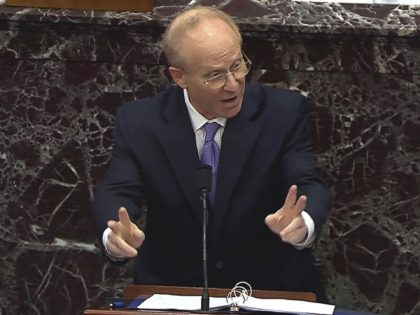 David Schoen (Senate Television via Associated Press)