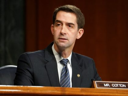 Sen. Tom Cotton (R-Ark.) questions President-elect Joe Biden's nominee for Secretary of Defense Retired Army Gen. Lloyd Austin during his confirmation before the Senate Armed Services Committee on Tuesday, January 19, 2021.