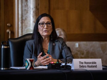 US Representative Deb Haaland, Democrat of New Mexico, speaks during the Senate Committee on Energy and Natural Resources hearing on her nomination to be Interior Secretary on Capitol Hill in Washington, DC, on February 23, 2021. (Photo by Graeme Jennings / POOL / AFP) (Photo by GRAEME JENNINGS/POOL/AFP via Getty …