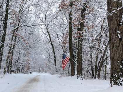 An American flag on a snow covered road with trees alongside the road.