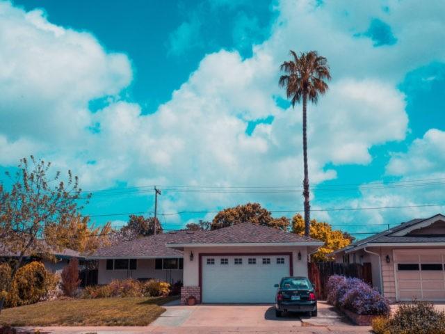 Homes in Santa Clara, California with palm tree
