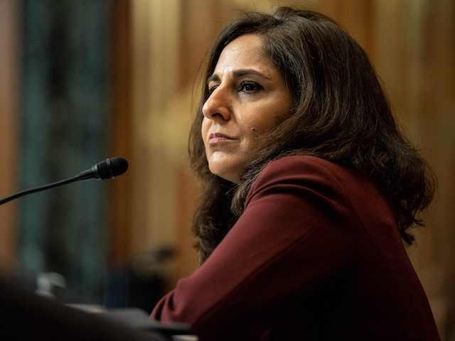 Neera Tanden, nominee for Director of the Office of Management and Budget (OMB), testifies during a Senate Committee on the Budget hearing on Capitol Hill in Washington, DC on February 10, 2021. (Anna Moneymaker/POOL/AFP via Getty Images)