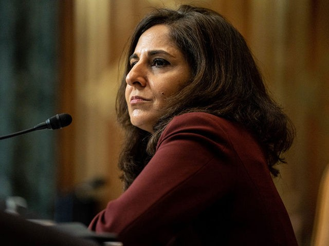 WASHINGTON, DC - FEBRUARY 10: Neera Tanden, nominee for Director of the Office of Management and Budget (OMB), testifies at her confirmation hearing before the Senate Budget Committee on February 10, 2021 at the U.S. Capitol in Washington, DC. Tanden helped found the Center for American Progress, a policy research …