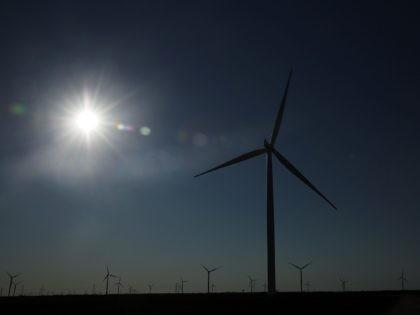 Texas wind turbines (Spencer Platt / Getty)