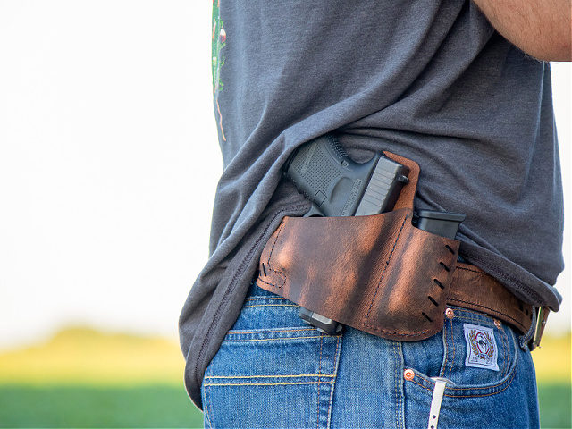 concealed carry gun holster