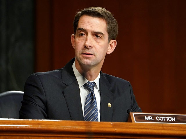 WASHINGTON, DC - JANUARY 19: Sen. Tom Cotton (R-AR) questions President-elect Joe Biden's nominee for Secretary of Defense, retired Army Gen. Lloyd Austin at his confirmation hearing before the Senate Armed Services Committee at the U.S. Capitol on January 19, 2021 in Washington, DC. Previously Gen. Austin was the commanding …