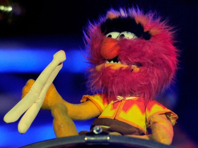 """LAS VEGAS, NV - NOVEMBER 19: An Animal character from """"The Muppet Show"""" is displayed on the drum kit of New Found Glory drummer Cyrus Bolooki during the Pop Punk's Not Dead tour at the Hard Rock Cafe on the Strip in support of the band's new album, """"Radiosurgery"""" on …"""