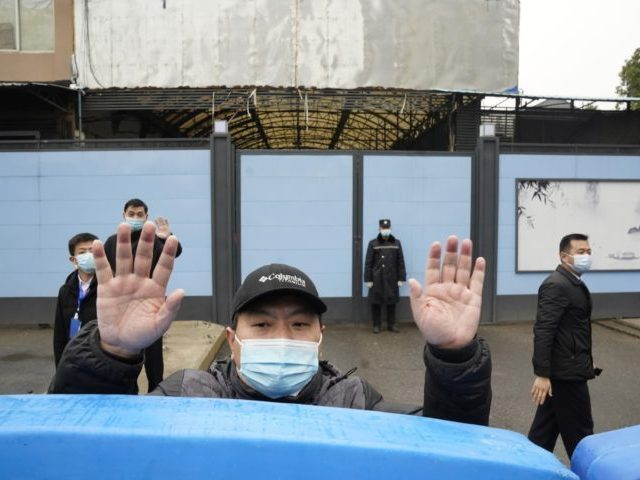 In this Jan. 31, 2021, file photo, a security guard waves for journalists to clear the road after a convoy carrying the World Health Organization team entered the Huanan Seafood Market on the third day of a field visit in Wuhan in central China's Hubei province. A member of the …