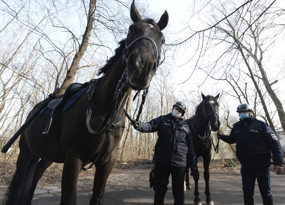 "Mounted police patrol in a park in Warsaw, Poland, on Friday, March 5, 2021. When they age, the dogs and horses that serve in Poland's police, Border Guard and other services cannot always count on a rewarding existence. Responding to calls from concerned servicemen, the Interior Ministry has proposed a bill that would give the animals an official status and retirement pension, hoping this gesture of ""ethical obligation"" will win unanimous backing. (AP Photo/Czarek Sokolowski)"