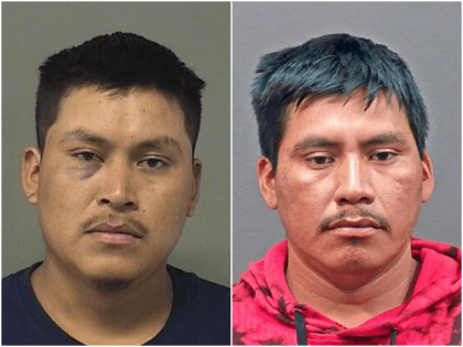 A pair of illegal alien brothers have been charged with …