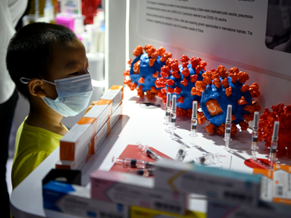 A boy looks at Sinovac Biotech LTD's vaccine candidate for COVID-19 coronavirus on display at the China International Fair for Trade in Services (CIFTIS) in Beijing on September 6, 2020. (Photo by NOEL CELIS / AFP) (Photo by NOEL CELIS/AFP via Getty Images)