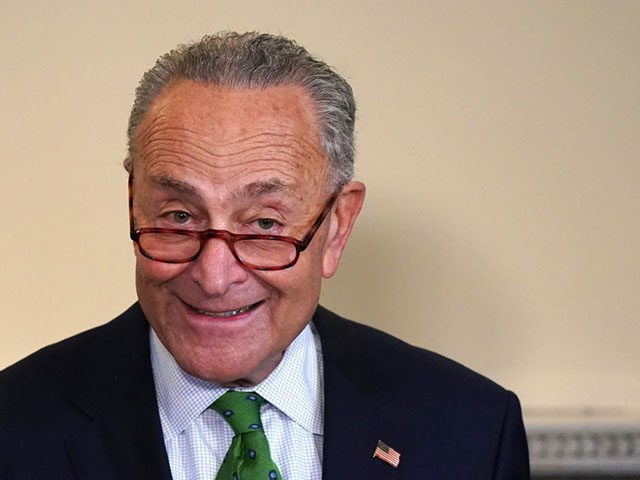 WASHINGTON, DC - SEPTEMBER 10: Senator Chuck Schumer speaks at the Back the Thrive Agenda press conference at the Longworth Office Building on September 10, 2020 in Washington, DC. (Photo by Jemal Countess/Getty Images for Green New Deal Network)