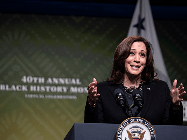 Vice President Kamala Harris speaks at the White House during a Black History Month Virtual Celebration on February 27, 2021 in Washington, DC. Congressman Steny H. Hoyer (D-MD) announced the 40th annual Black History Month Virtual Celebration today. (Photo by Tasos Katopodis/Getty Images)