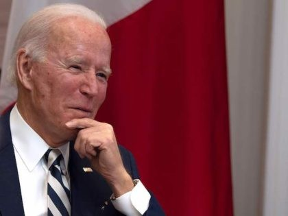 US President Joe Biden meets virtually with Mexican President Andres Manuel Lopez Obrador at the White House in Washington, DC, on March 1, 2021. (Jim Watson/AFP via Getty Images)
