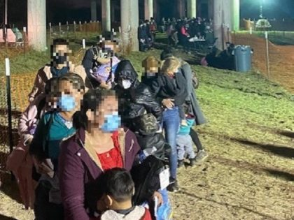 RGV agents apprehend a group of 130 migrants who illegally crossed the border on February 24, 2021, near Mission, Texas. (Photo: U.S. Border Patrol/Rio Grande Valley Sector)