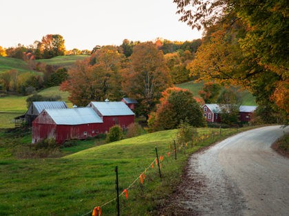 Gravel road to a traditional American farm with a red wooden barn in a rolling rural landscape in autumn. Beautiful fall foliage. Woodstock, VT, USA.