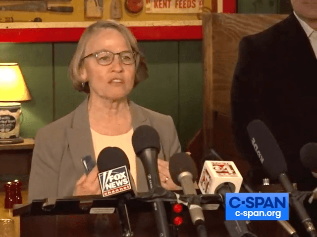 Marionette Miller-Meeks speaks at a press conference in Iowa. (CSPAN)