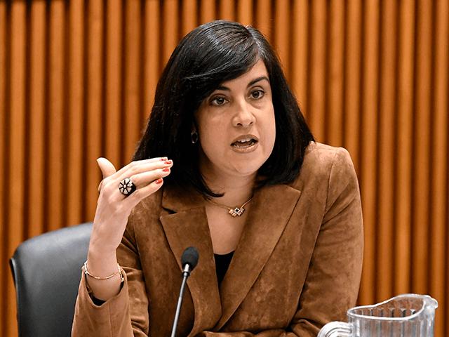 Assemblywoman Nicole Malliotakis, R-Staten Island, questions New York City Mayor Bill de Blasio during a joint legislative budget hearing on local government Monday, Feb. 11, 2019, in Albany, N.Y. (AP Photo/Hans Pennink)