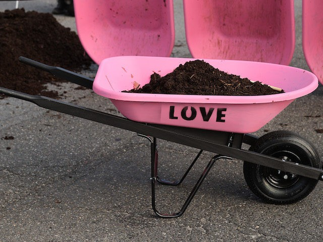 Activists use shovels and wheelbarrows to pile manure on the street outside the White House while protesting against President Joe Biden's climate change policy on Earth Day, April 22, 2021 in Washington, DC. Organized by the Extinction Rebellion DC, protesters used bright pink wheelbarrows to dump heaps of cow manure …