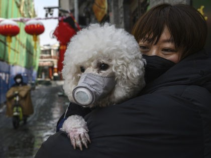 A Chinese woman holds her dog that is wearing a protective mask as well as they stand in the street on February 7, 2020 in Beijing, China. The number of cases of a deadly new coronavirus rose to more than 31000 in mainland China Friday, days after the World Health …