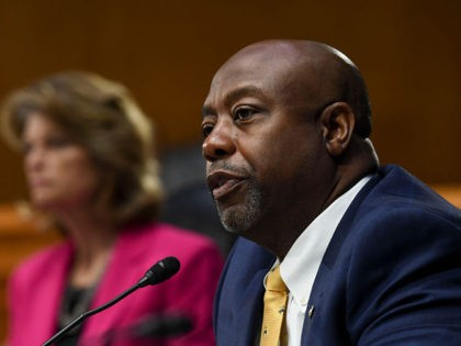 WASHINGTON, DC - MAY 12: U.S. Senator Tim Scott (R-SC) questions the witnesses, who were appearing remotely, during the Senate Committee for Health, Education, Labor, and Pensions hearing on COVID-19 May 12, 2020 in Washington, D.C. The committee will hear testimony from members of the White House Coronavirus Task Force …