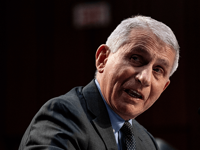 Fauci: Infections Are Too High to Let Kids Go out Unmasked – 'We Have Children Wearing Masks' Outside Until They're Vaccinated