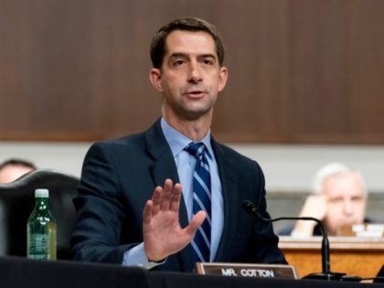 WASHINGTON, DC - MARCH 25: Sen. Tom Cotton (R-AR) speaks during a hearing to examine United States Special Operations Command and United States Cyber Command in review of the Defense Authorization Request for fiscal year 2022 and the Future Years Defense Program, on Capitol Hill on March 25, 2021 in …