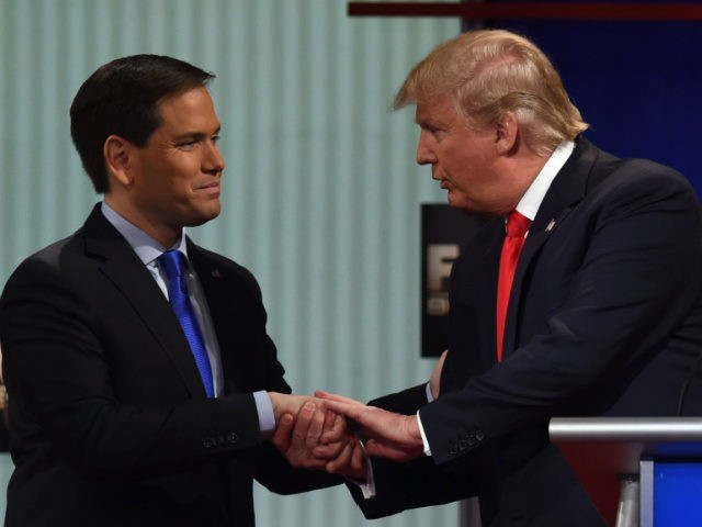 Republican Presidential candidates, businessman Donald Trump (R) and Florida Senator Marco Rubio shake hands after the Republican Presidential debate sponsored by Fox Business and the Republican National Committee at the North Charleston Coliseum and Performing Arts Center in Charleston, South Carolina on January 14, 2016. AFP PHOTO/ TIMOTHY A. CLARY …