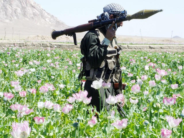 In this photograph dated 15 April 2005, an Afghan soldier with a rocket is pictured in a drive by officials to destroy poppies in a field in the Maiwand district, 45 kms west of the southern city of Kandahar. Taliban rebels determined to keep southern Afghanistan in chaos 13 March …