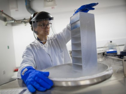 CAMBRIDGE, UNITED KINGDOM - DECEMBER 09: A scientist lowers biological samples into a liquid nitrogen storage tank at the Cancer Research UK Cambridge Institute on December 9, 2014 in Cambridge, England. Healthy and cancerous biological samples are stored at -196degrees to preserve them for use laboratory tests and experiments. Cancer …