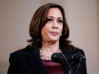 Report: VP Harris Resisting Bipartisan Push to Visit Southern Border Amid Crisis