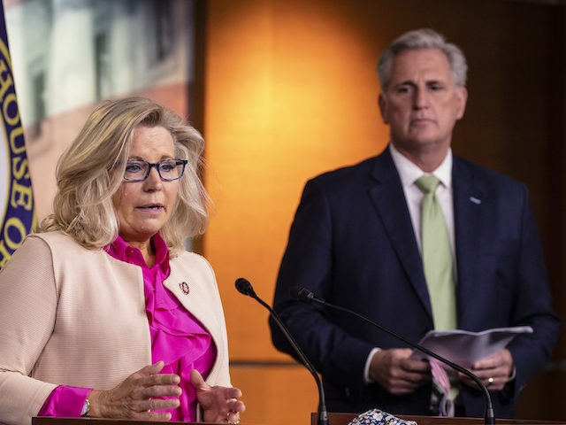 Rep. Liz Cheney (R-WY) speaks during a news conference with House Minority Leader Kevin McCarthy (R-CA) and other Republican members of the House of Representatives at the US Capitol on July 21, 2020 in Washington, DC. (Samuel Corum/Getty Images)