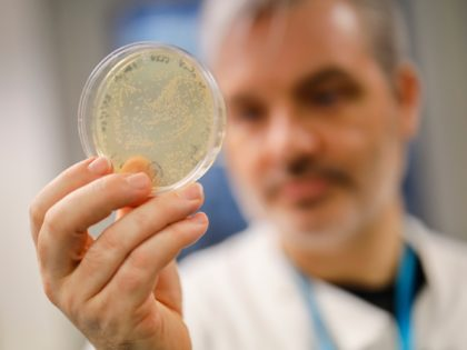 Doctor Paul McKay, who is working on an vaccine for the 2019-nCoV strain of the novel coronavirus, Covid-19,, poses for a photograph with bacteria containing the coronavirus, Covid-19, DNA, at Imperial College School of Medicine (ICSM) in London on February 10, 2020. - A team of UK scientists believe they …