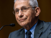 Fauci: 'No Evidence' for COVID Originating from Lab
