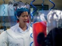 Report: Wuhan Virology Laboratory DID Keep Live Bats on Premises