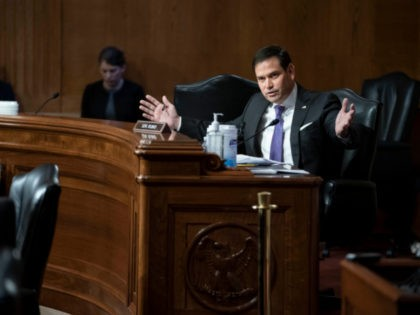 WASHINGTON, DC - MAY 26: Senator Marco Rubio (R-FL) questions witnesses during a Senate Appropriations Labor, Health and Human Services Subcommittee hearing looking into the budget estimates for National Institute of Health (NIH) and state of medical research n Capitol Hill, May 26, 2021 in Washington, DC. (Photo by Sarah …