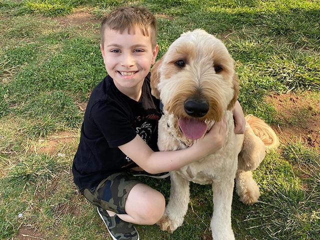 Healing Hearts - A Life Changing Dog