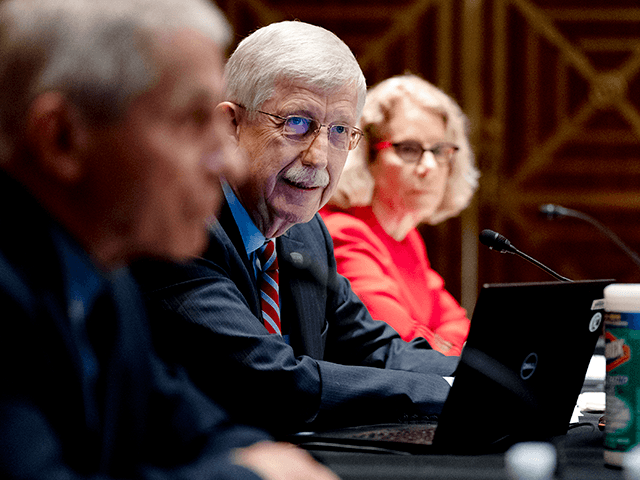 Dr. Francis Collins, Director of the U.S. National Institutes of Health (NIH), center, Anthony Fauci, director of the National Institute of Allergy and Infectious Diseases, left, and Diana Bianchi, director of the Eunice Kennedy Shriver National Institute of Child Health and Human Development, listen during a Senate Appropriations Subcommittee looking …