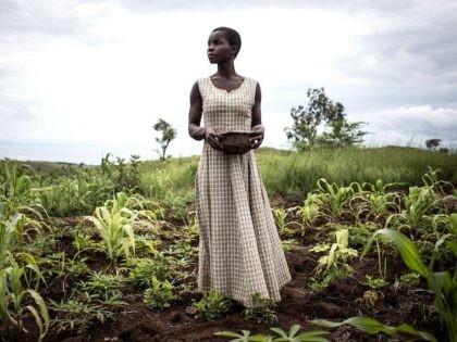 Experts: Elite-Led 'Green Revolution' Impoverishing Africa