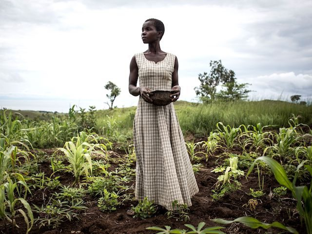 Martha, who has been displaced with her husband and five children for six months, plants seeds in a makeshift camp for Internally Displaced Persons (IDP's) and returnees on March 21, 2018 in Kabutunga, Democratic Republic of the Congo. - The village of Kabutunga was burned down during an attack, some …