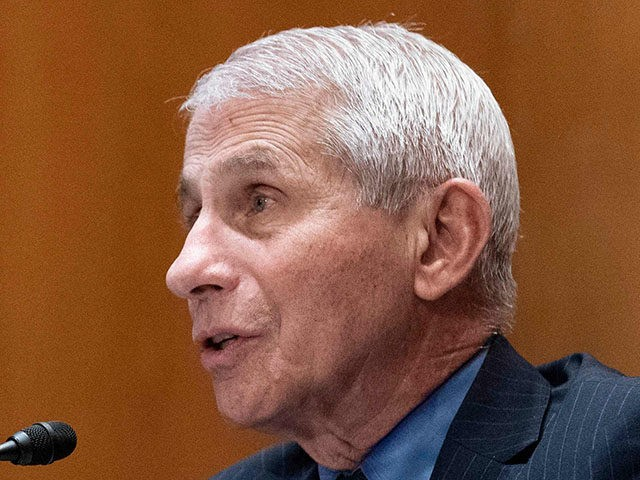 Anthony Fauci, director of the National Institute of Allergy and Infectious Diseases, speaks during a hearing looking into the budget estimates for National Institute of Health (NIH) and the state of medical research on Capitol Hill in Washington, DC on May 26, 2021. (Photo by SARAH SILBIGER / POOL / …