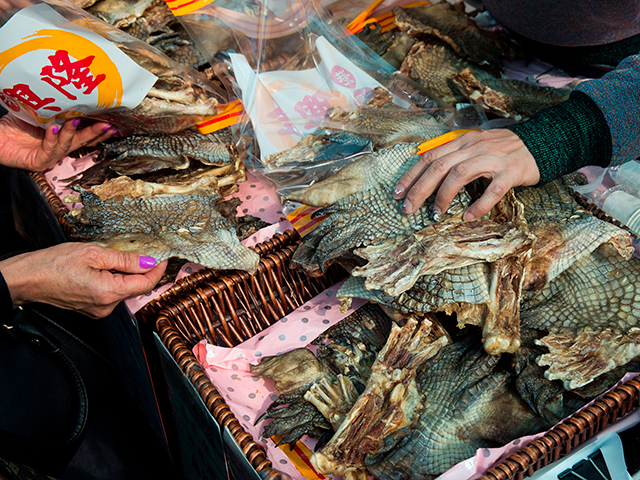 Crocodile skin is displayed at a stall at the farmers market in the Kowloon district of Hong Kong on January 13, 2018. / AFP PHOTO / ISAAC LAWRENCE (Photo credit should read ISAAC LAWRENCE/AFP via Getty Images)