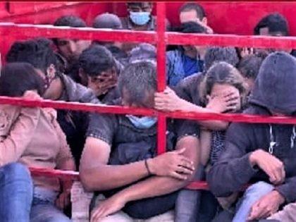 Texas Cops Find 40 Migrants Locked in Horse Trailer