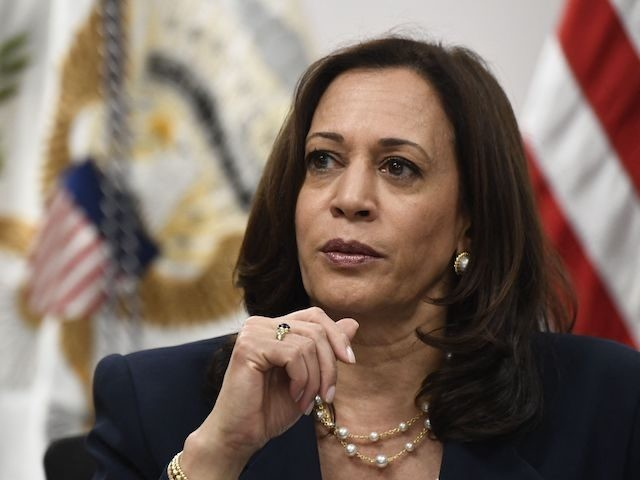 US Vice President Kamala Harris participates in a roundtable discussion with advocates from faith-based NGOs and shelters and legal service providers, during a visit to the Paso del Norte Port of Entry on June 25, 2021 in El Paso, Texas. - Vice President Kamala Harris is traveling in El Paso, …