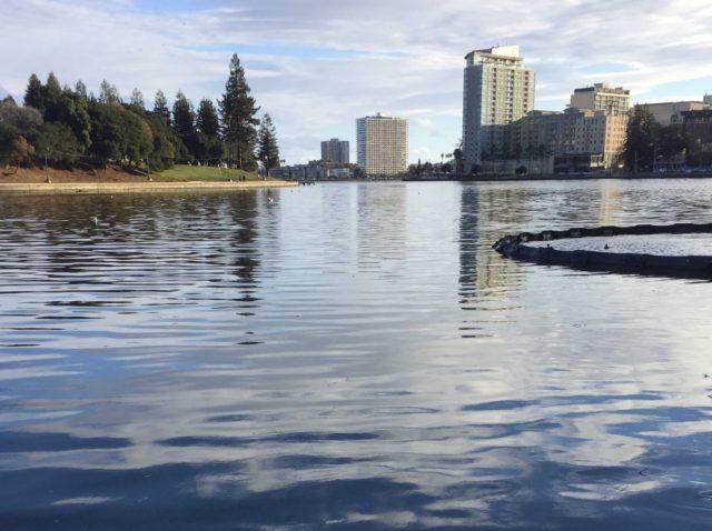 Lake Merritt (Joel Pollak / Breitbart News)
