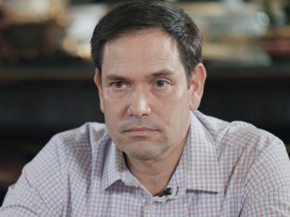 Marco Rubio (Photo by Matthew Perdie)