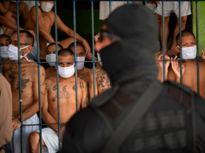 Members of the MS-13 and 18 gangs remain in an overcrowded cell as a security guard of the Director of the General Directorate of Penal Centers, Osiris Luna (out of frame), stands by, at the Quezaltepeque prison, in Quezaltepeque, El Salvador, on September 4, 2020. - Authorities from the General …